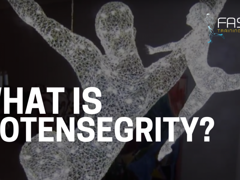Τι είναι η βιο-τασο-ακεραιότητα (biotensegrity)